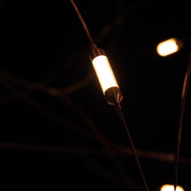 Flock of Light 21