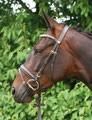 Hans Melzer Horse Equipment Trensenzaum Hans Melzer Mechtersen