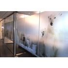 PrintEtched Glas printfolie- ASLAN DFL-210  - 127 cm