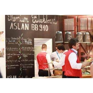 Blackboard Master Aslan  BB-910 - Polymeer 125cm - Mat