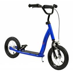 2Cycle Step Blauw met Luchtbanden 12 inch