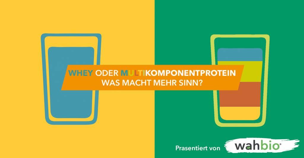 Whey oder Multikomponenten-Protein?