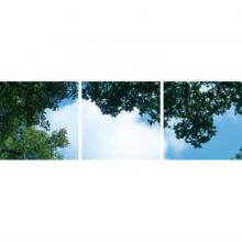 Fotodruckbild Wolken und Wälder 60x180cm für 3x 60x60cm Led-Platte