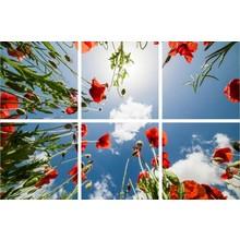 Fotodruckbild Wolken und Rose 180x120cm für 6x 60x60cm Led-Platte