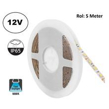 Led Strip ROL 5 Meter 5050SMD, 12,6w/m, 60 led/m, 1200Lm/m, 6000K Daglicht wit, 12v, IP65, 10mm, 2 Jaar garantie