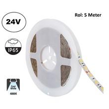 Led Strip ROL 5 Meter 5050SMD, 13,6w/m, 60 led/m, 1320Lm/m, 4000K Neutraal Wit, 24v, IP65, 10mm, 2 Jaar garantie