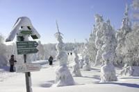 Winterreis Saksische Schweiz