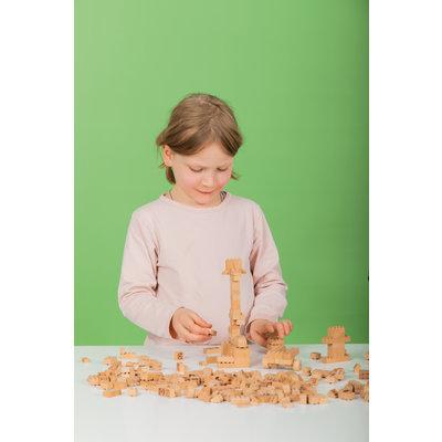 Houten bouwblokken type Lego