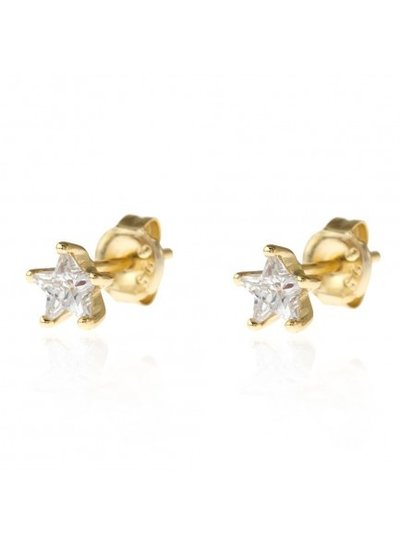 Adamarina Flower Circonia Earrings Gold