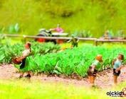Landschapsbouw / Scenery