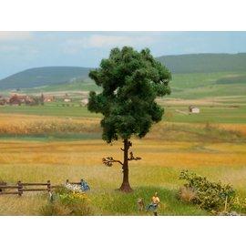 NOCH Noch 21911 Dennenboom 12 cm hoog