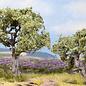 NOCH Noch 21995 Olivenbäume, 2Stück, 6 und 9cm hoch