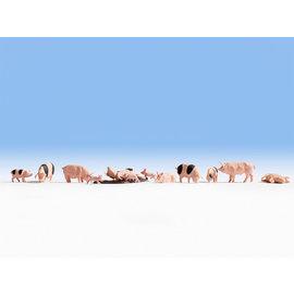 NOCH Noch 15712 Schweine (Spur H0), 12 Figuren