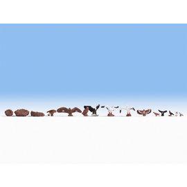 NOCH Noch 15775 Vogels (Schaal H0), 15-delig
