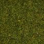 """NOCH Noch 08312 Strooigras """"Weide"""", 2,5mm, 20g"""
