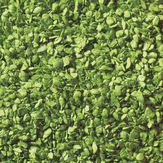 NOCH Noch 07142 Bladeren, lichtgroen, 50 g