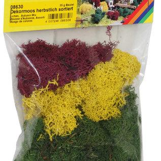 NOCH Noch 08630 Decoratiemos, herfstkleuren, 35 g