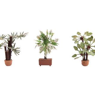 NOCH Noch 14023 Mediterrane Pflanzen 3x (Spur H0)