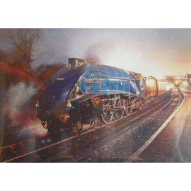 James Green Kunstwerk 'Sir Nigel Gresley'