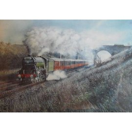 James Green Kunstwerk 'Flying Scotsman'