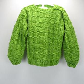Groene gehaakte trui  (98/104)