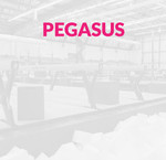 Lemmer / Pegasus