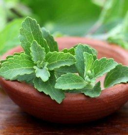 Stevia-Süsskrautpulver 100g