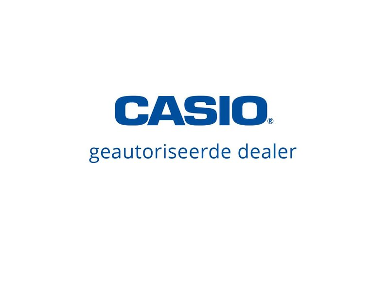 Casio Casio XJ-A252