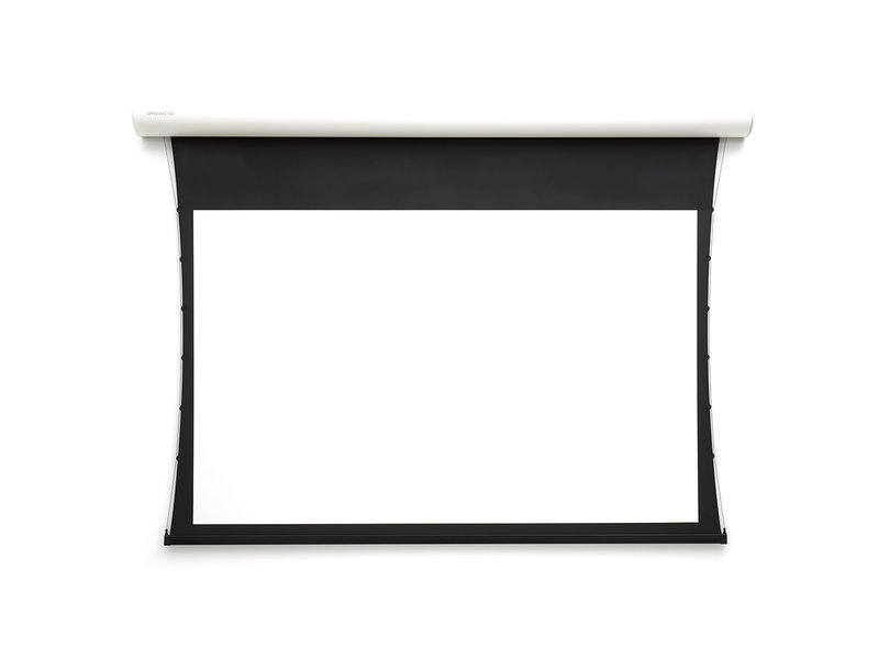 Projecta Projecta Tensioned Elpro Concept WS HDTV Mat Wit