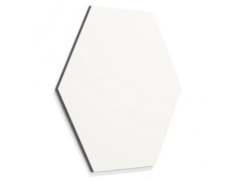 Chameleon Chameleon zeshoek whiteboard frameloos