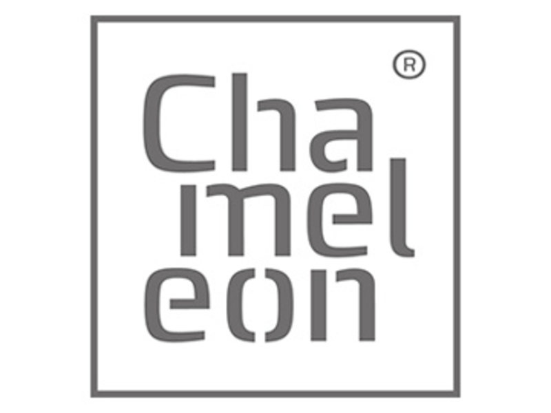Chameleon Chameleon Portable dubbelzijdig whiteboard 82 x 172 cm
