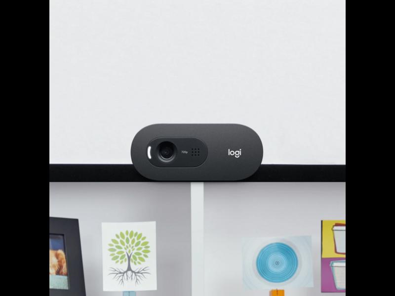 Logitech Logitech C505 HD Webcam