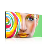 DynaScan DynaScan DS551LX4 supersmalle rand Digital Signage Display