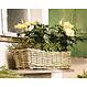 """Blumenkasten """"Rattan"""", groß"""