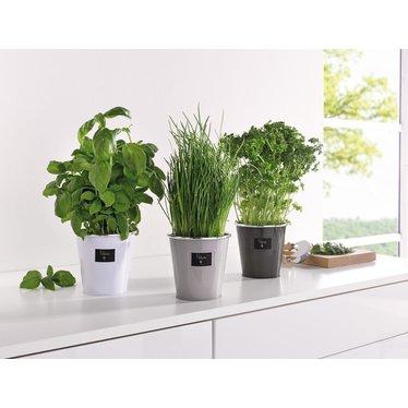 "Übertopf ""Herbs"", 3er Set"