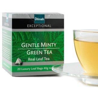 Dilmah Gentle Minty Green Tea