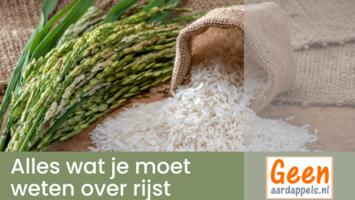 Alles wat je moet weten over rijst