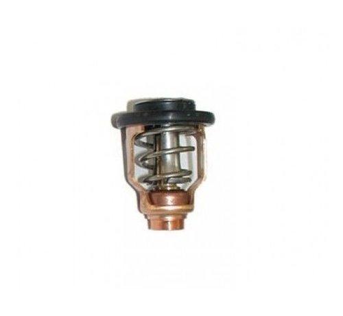 Quicksilver Thermostat