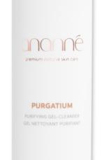 Ananné Ananné Purgatium Gel Nettoyant Purifiant