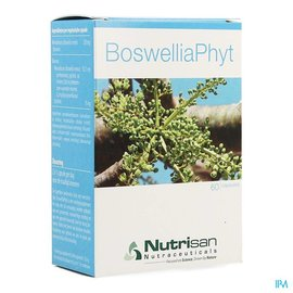 NUTRISAN Boswelliaphyt V-caps 60