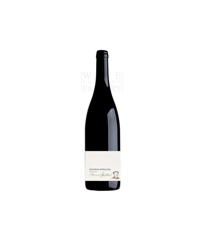 Vignobles Bodillard Saint-Amour
