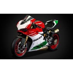 Pocher HK117 - Ducati 1299 Panigale R Reserveren