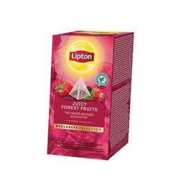 Lipton Lipton thee Bosvruchten Exclusive Selection doos 25 zakjes