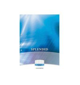 Splendid Aurora Splendid cursusblok A4 70g/m² 2-g. geruit 5mm 100vel
