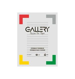 Gallery Gallery Steinbach tekenblok, ft 27 x 36 cm, 200 g m², 20 vel