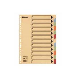 Esselte Esselte tabbladen 12 tabs, karton van 275 g/m²