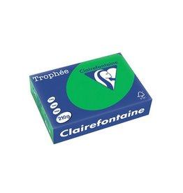 Clairefontaine Papier Clairefontaine Trophée Intens A4, 210g, 250vel, biljartgroen