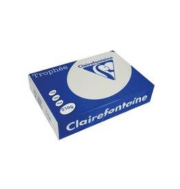Clairefontaine Papier Clairefontaine Trophée Pastel A4, 210 g, 250 vel, lichtgrijs