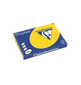 Clairefontaine Papier Clairefontaine Trophée Pastel A3 goudgeel, 120 g, 250 vel