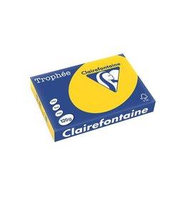 Clairefontaine Papier Clairefontaine Trophée Pastel A4 goudgeel, 120 g, 250 vel